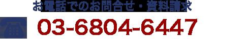 03-6869-2906